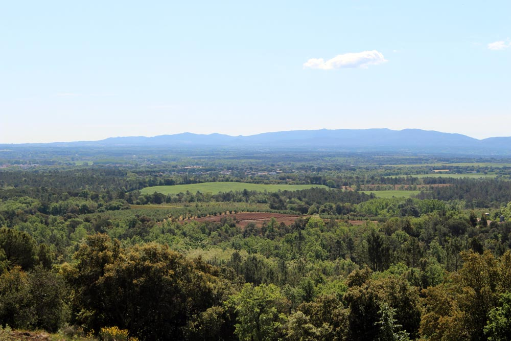 Plana de la Selva Avellana de Brunyola Girona Catalunya